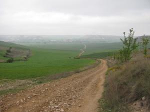camino-big